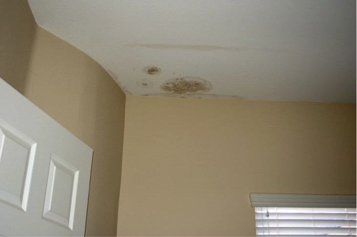 Water Damage Construction Defects